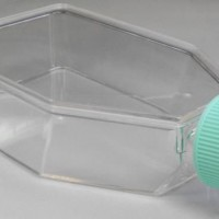 250ml Treated Non Vented Tissue Culture Flask, TCF-011-250