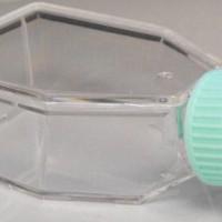 50ml Non Treated Non Vented Tissue Culture Flask, TCF-001-050