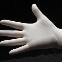LARGE Latex Glove Lightly Powdered.  100-153