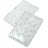 12 Well Tissue Culture Plate with Cell Adhesion - CLEARANCE