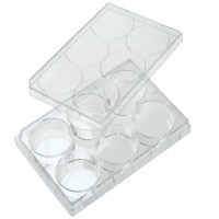6 Well Tissue Culture Plate with Cell Adhesion - CLEARANCE